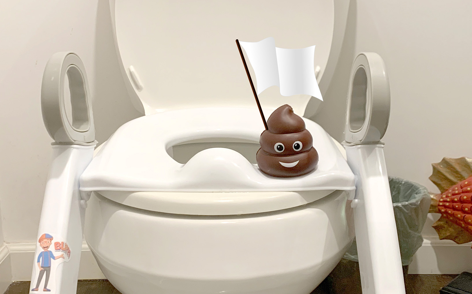 How We Failed Toilet Training
